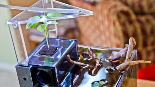 EcoQube - Adjustable LED and Plant Media